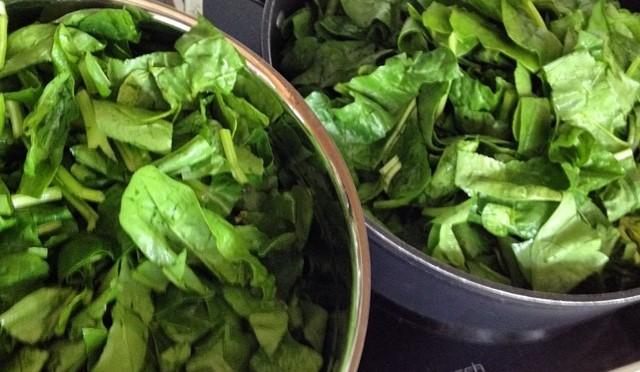 Mist Rezept: wie krieg ich denn ein Kilo #Spinat in die Pfanne?
