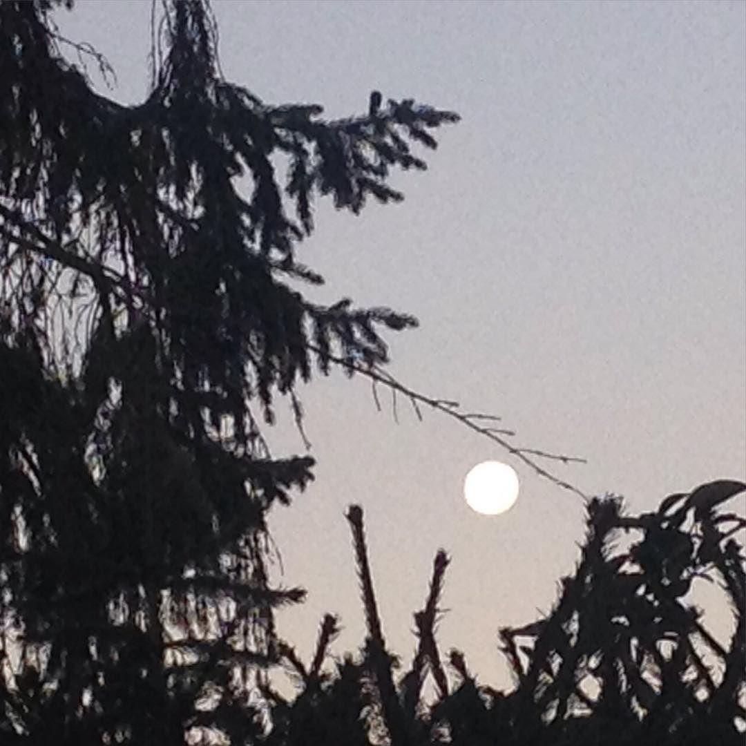 Heute heult keiner mehr den #Mond an. Schade eigentlich.